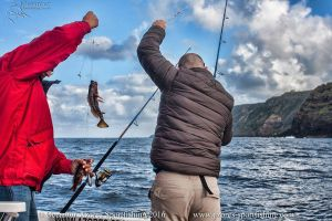 Combo –  Sea Fishing and Guided Tour to Furnas